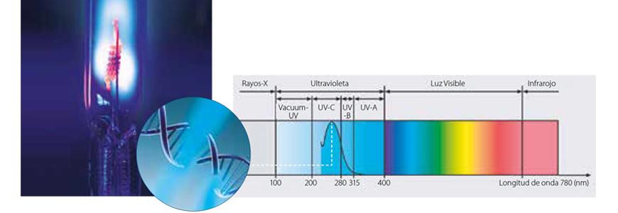 desinfección ultravioleta para agua de piscina